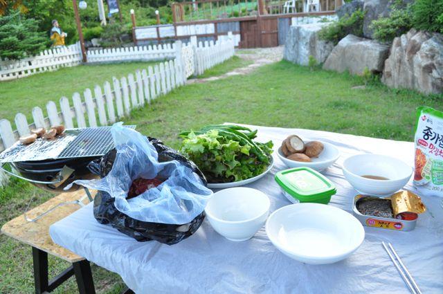 Korean BBQ dinner in the gardens