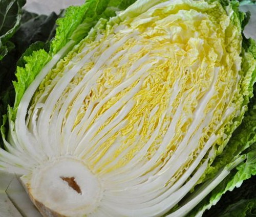 Korean napa cabbage cut in half for Kimjang