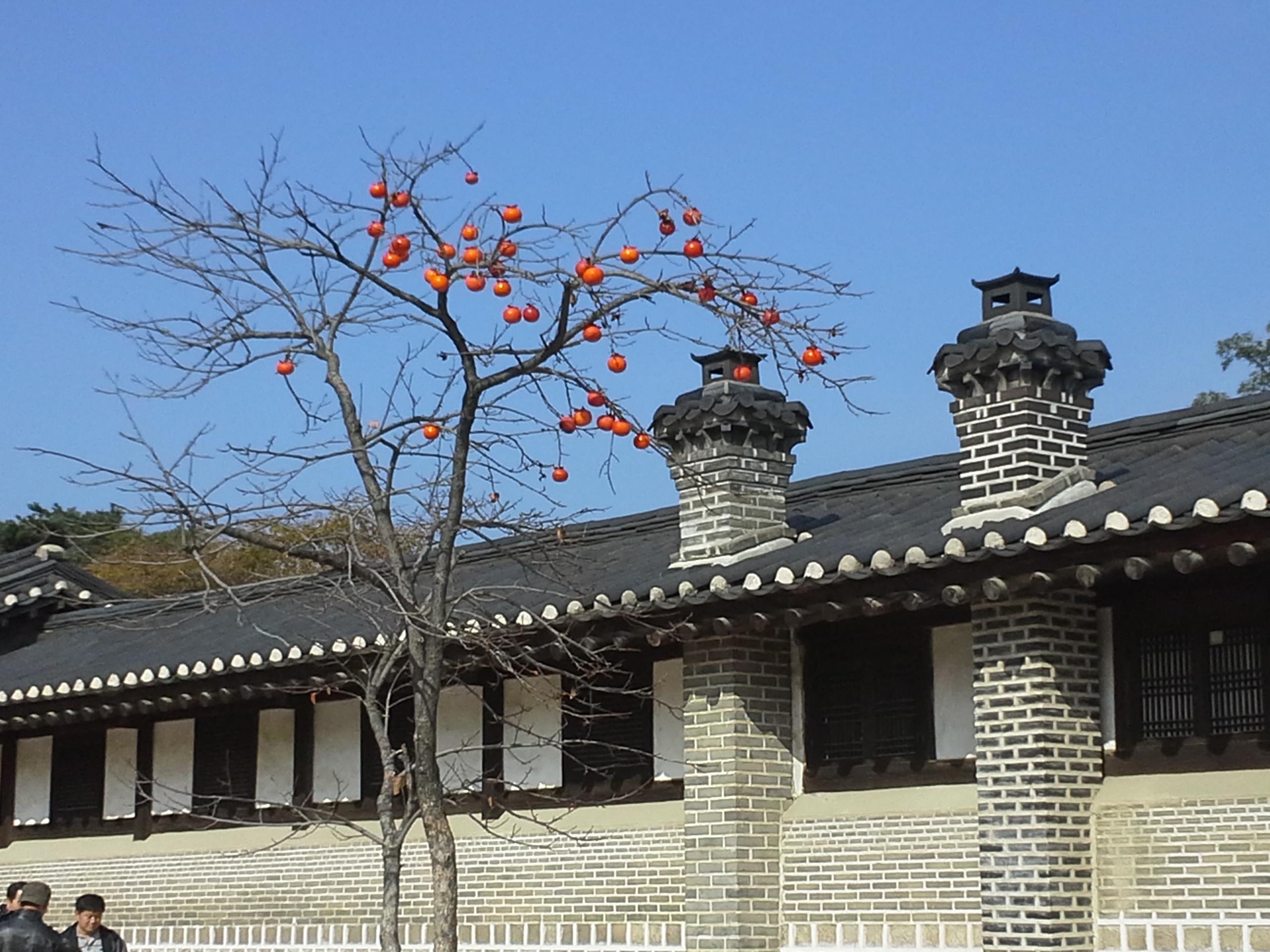 Korean Kyungbok Palace