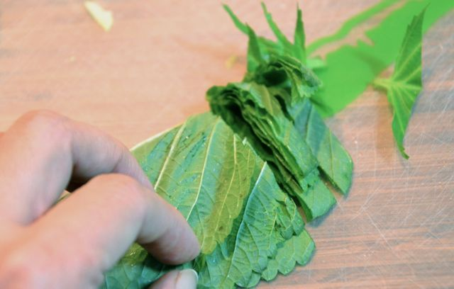How to cut Perilla (Kkaetnip) leaves