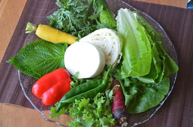 Vegetables for Makguksu(막국수)