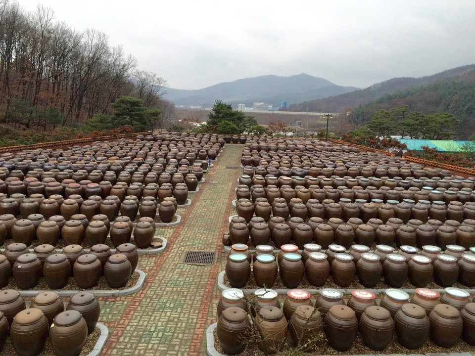 Earthenware or Jangdok (장독) where gochujang and doenjang are being made