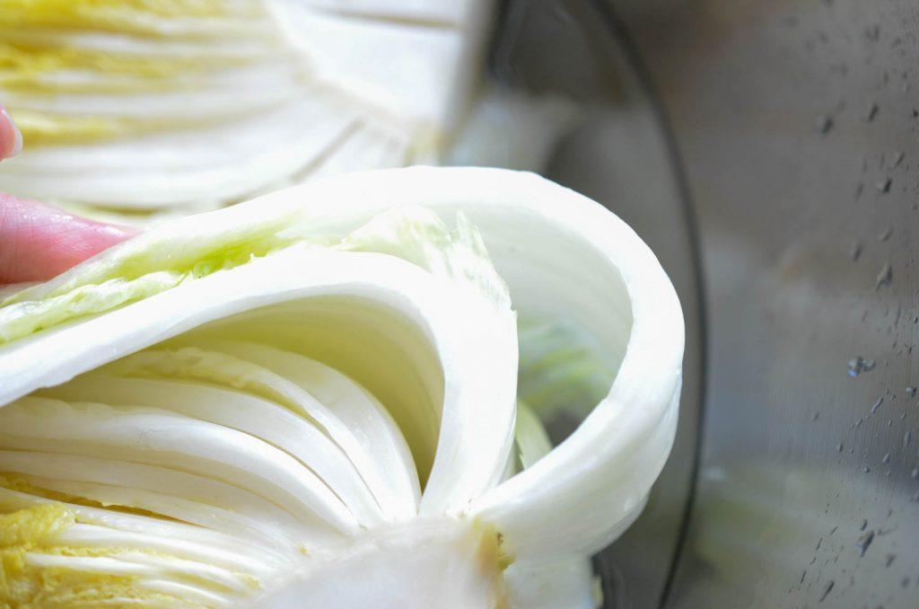 bending cabbage