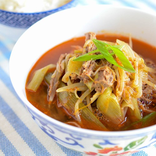 Yukgaejang (Korean spicy beef soup) in bowl served with rice