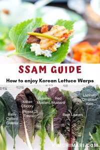 ssam guide pin