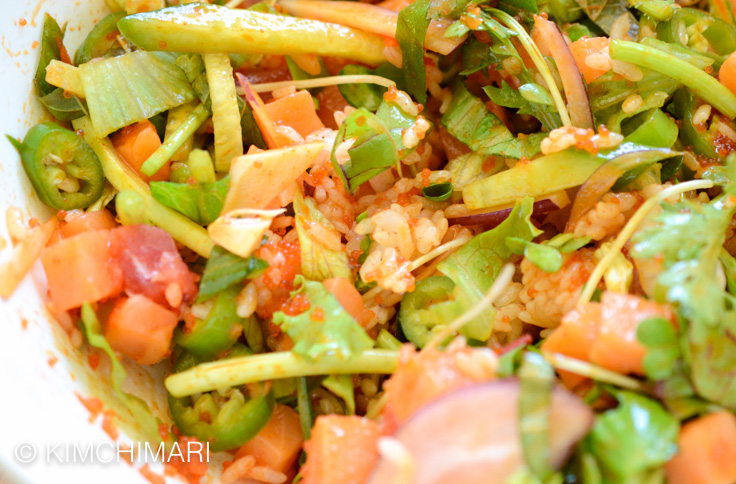 Korean Rice Bowl with Sashimi mixed with Gochujang (Hoedeopbap)