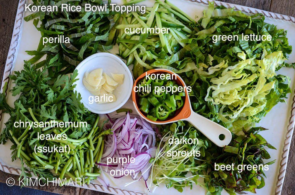 Korean Rice Bowl (Hoedeopbap) Toppings