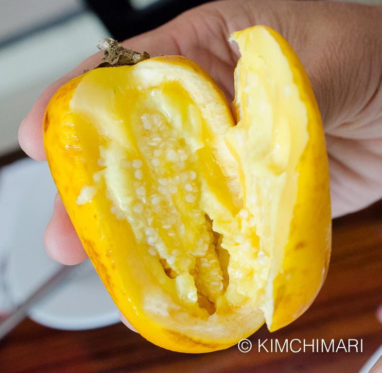 Cocona - Peruvian Amazon fruit that has citrusy flavors