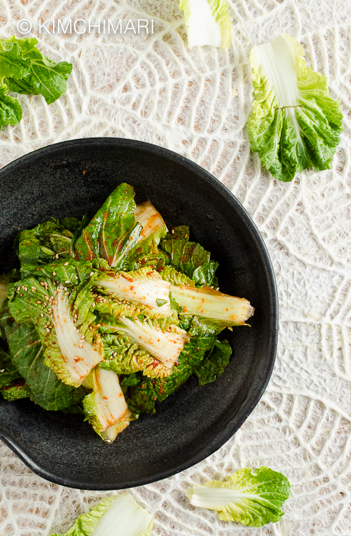 Fresh Cabbage Kimchi Salad (Geotjeori)