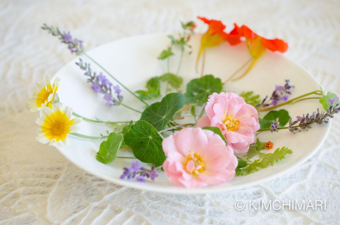 Garden flowers for Hwajeon