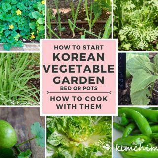 collage image of Korean vegetables