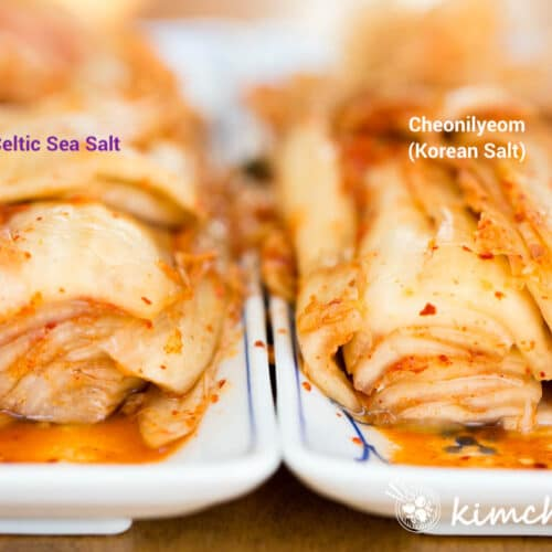 side by side picture of kimchi made with celtic sea salt and korean sea salt