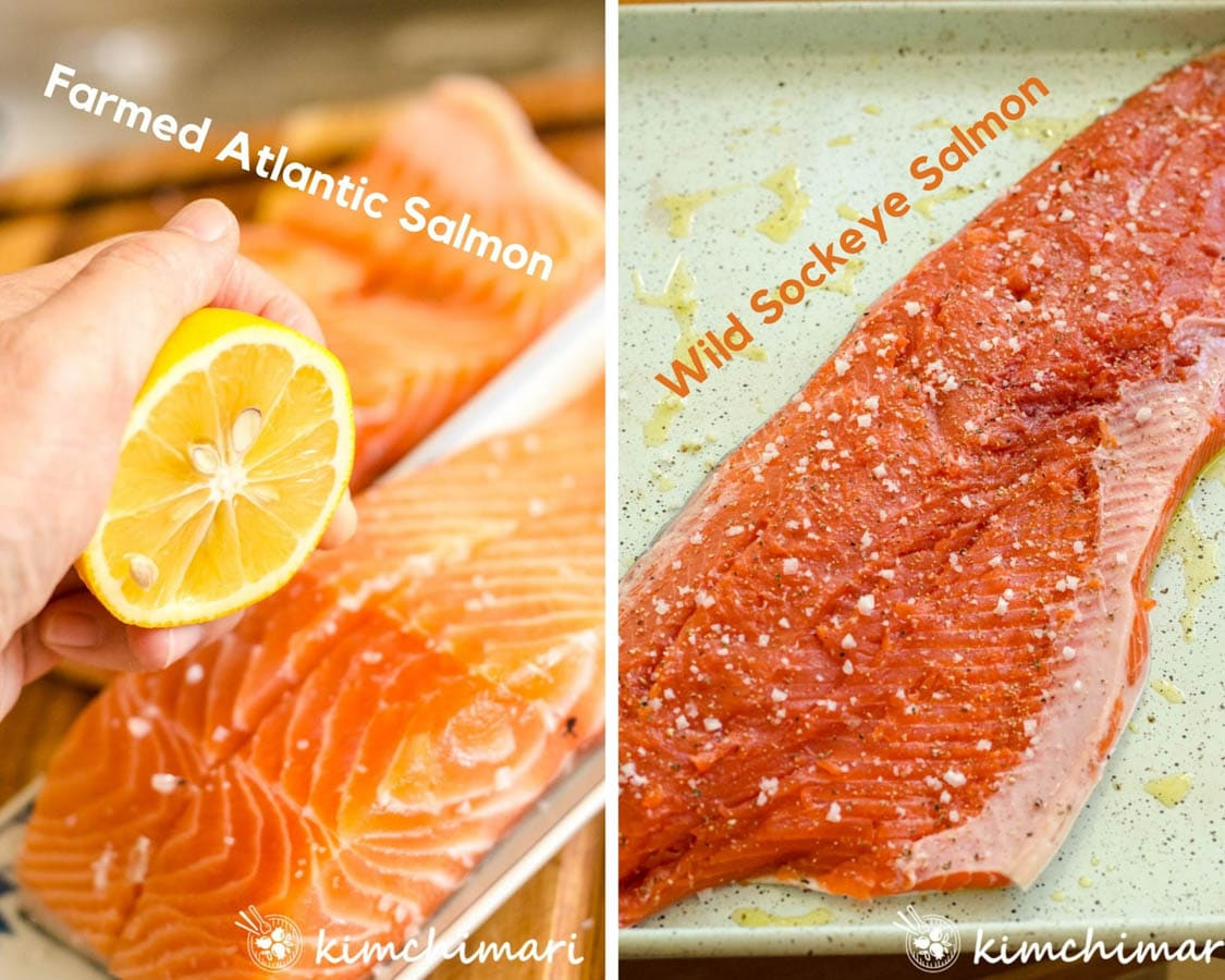 2 images of farmed and wild salmon pieces with showing juicing a lemon on top